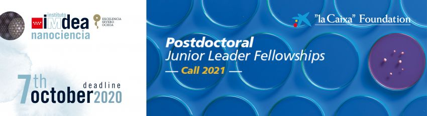 Postdoctoral Junior Leader fellowships programme